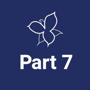 Part 7 | Designing Accessible Institutions