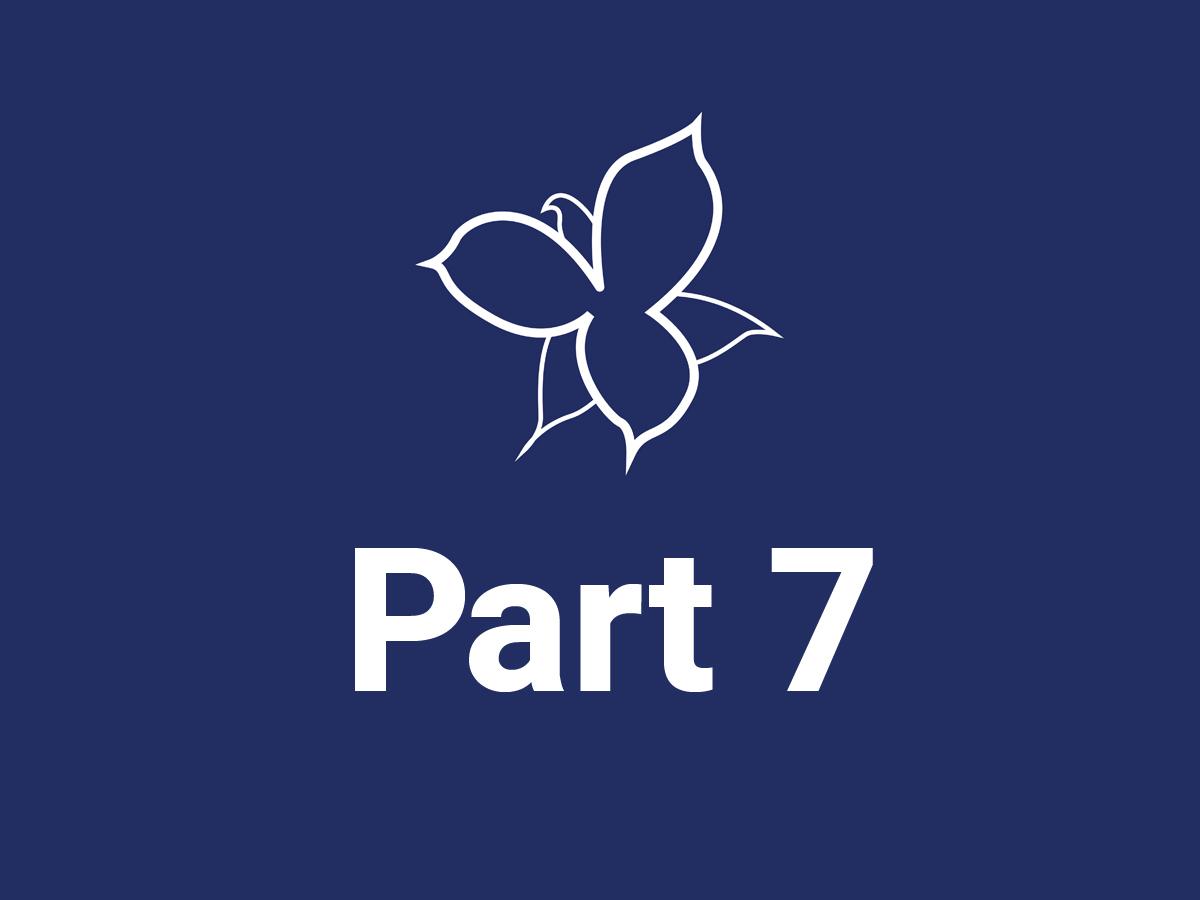 part7