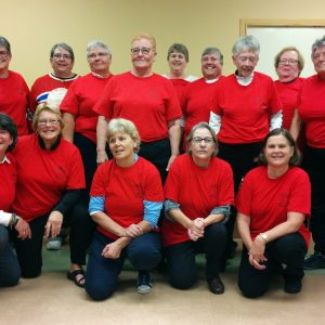 OHS Celebrates Trailblazing Women's Hockey Team: Kingston Red Barons