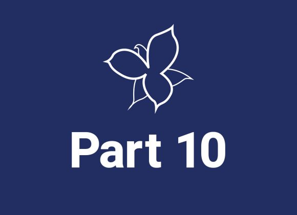 Part 10 | Audio Guides and Museums