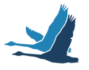 Thunder Bay Finnish Canadian Historical Society Logo
